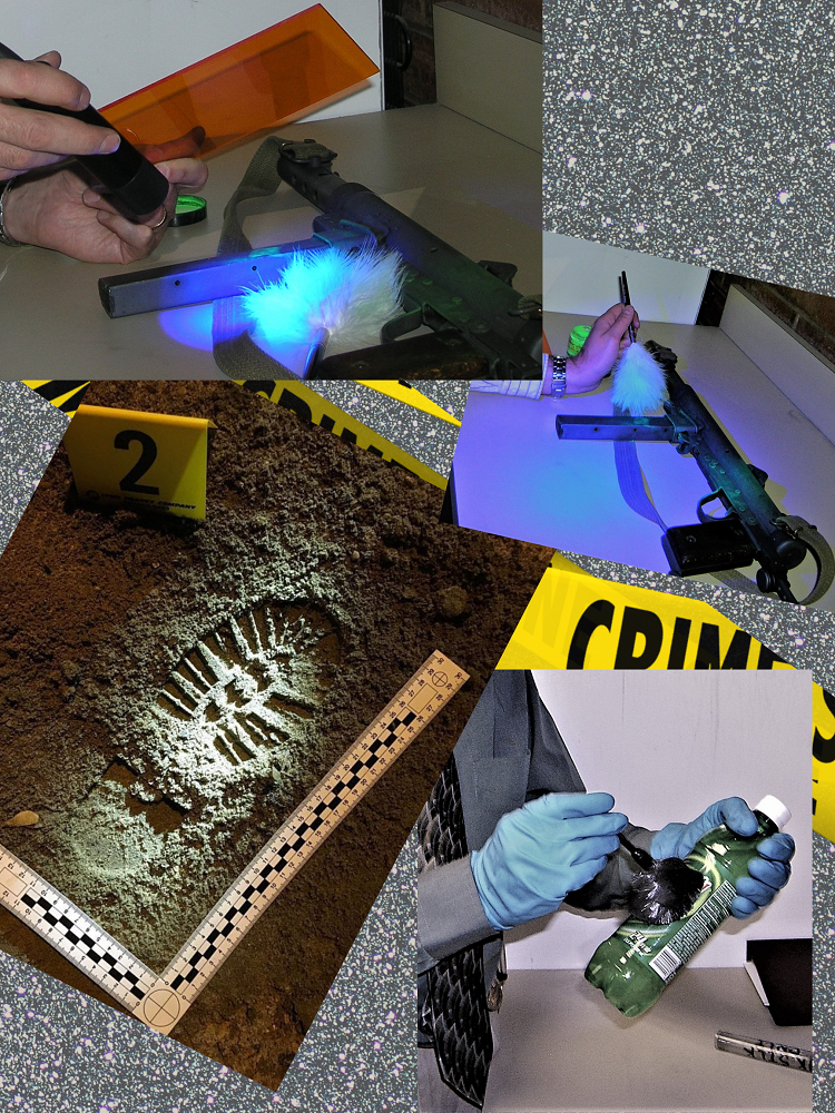 Collage of images from a crime scene investigation